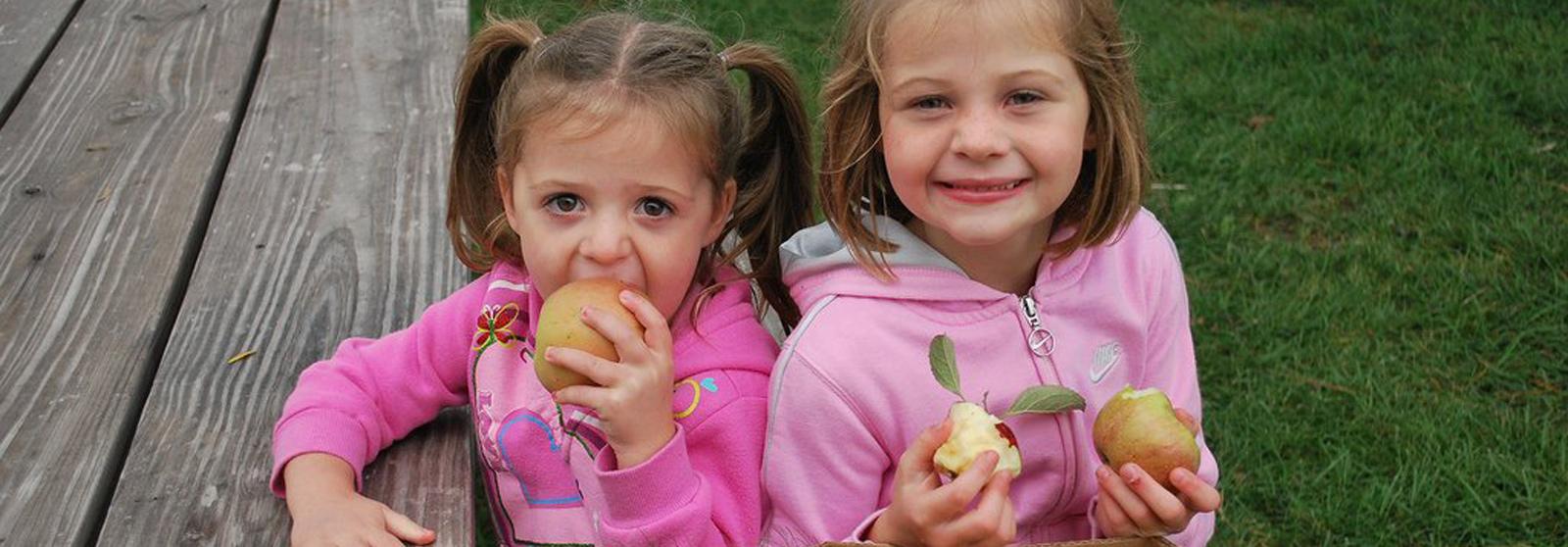 Kimmel Orchard